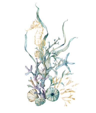 Watercolor tropical card of seahorse, starfish, laminaria and corals. Underwater animals and plant isolated on white background. Aquatic illustration for design, print or background.