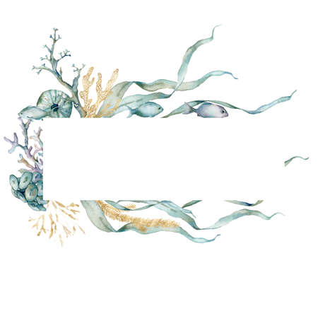 Watercolor underwater frame of fishes, shells, linear laminaria and gold corals. Tropical animals and plant isolated on white background. Aquatic illustration for design, print or background. 写真素材