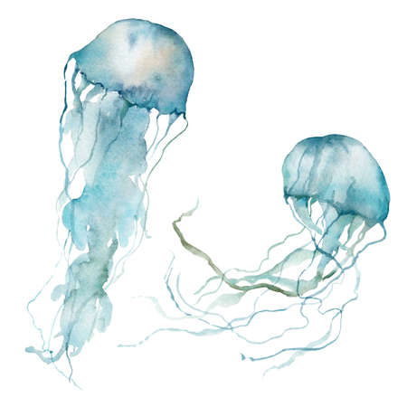 Watercolor tropical set of blue jellyfish. Underwater animals isolated on white background. Aquatic illustration for design, print or background. Trendy nautical collection. 写真素材