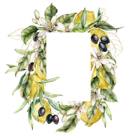 Watercolor frame of ripe lemons, black olives, gold leaves and linear flowers. Hand painted tropical border of fruits isolated on white background. Food illustration for design, print or background. 写真素材