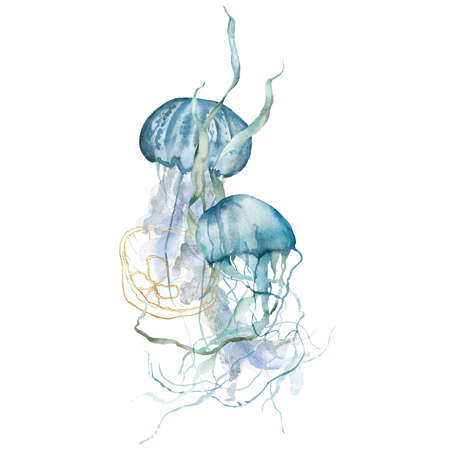 Watercolor tropical composition of blue jellyfishes, gold linear shell and laminaria. Underwater animals and plant isolated on white background. Aquatic illustration for design, print or background.