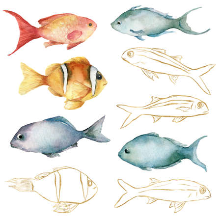 Watercolor tropical set of gold, red, orange and blue fishes. Underwater linear animals isolated on white background. Aquatic illustration for design, print or background.