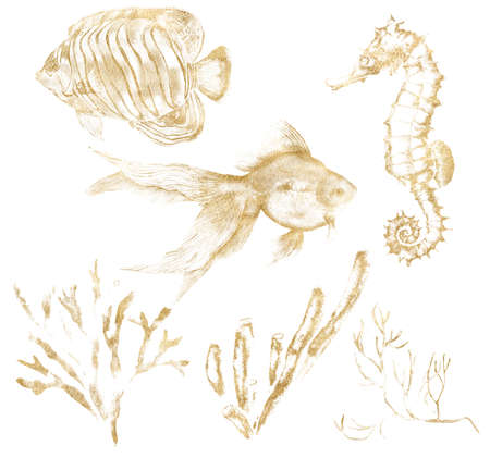 Watercolor tropical set of gold seahorse, fishes and corals. Underwater linear plants and animals isolated on white background. Aquatic illustration for design, print or background.