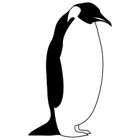 bird penguin vector , arctic animal symbol