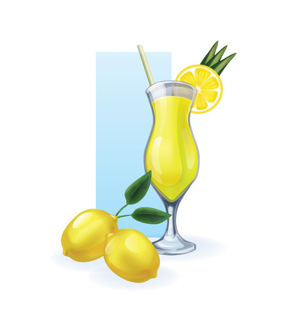 bocal: glass of juice or cocktail of tropical exotic fruit decorated by slice. realistic, isolated on white Illustration