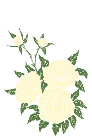 pfingstrosen: Hintergrundgrafik florales Design von Pfingstrosen Strau� Illustration