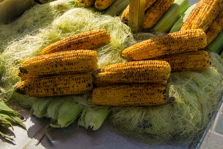 Charcoal grill sweet corns. corn cooked in barbecue barbecued corn on the roaster. Stock Photo