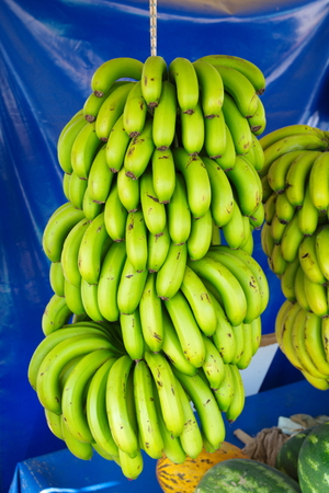 Turkish Anamur Bananas. Banana cob ready for sale