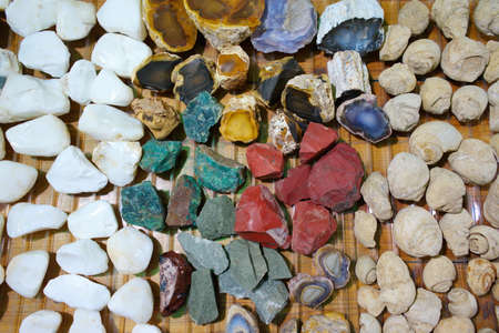 mineral stones and fossilized snails. used in jewelry, accessories and mining Stock fotó