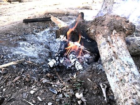 pyre: Bonfire burning