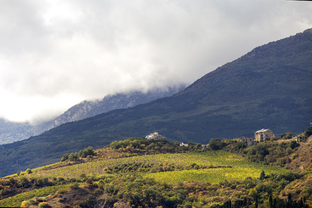 podere: A hillside vineyards with white house in Crimea
