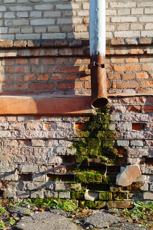 Moss and damp on a brick wall of a house in Kharkiv, Ukraine photo