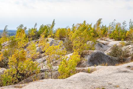 Sand hills with greens bushes. Rummu quarry, Estonia Stock Photo