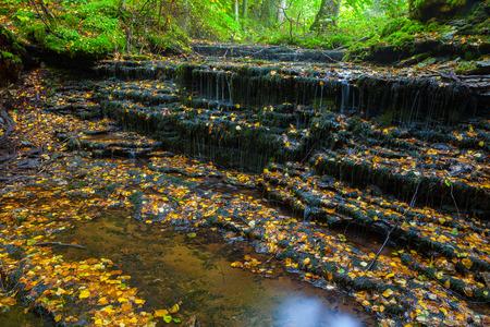 Really small and nice waterfall Vasaristi in Estonia, national park Lahemaa