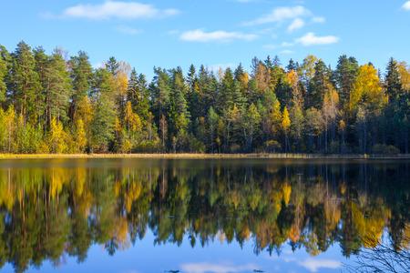 Autumn forest reflection in pond, smooth water, Aegviidu, Estonia