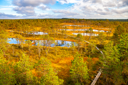 bogs: Aerial view of swamp lakes and wooden path at autumn season. Viru bogs at Lahemaa national park Stock Photo