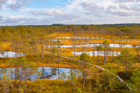 Aerial view of swamp lakes and wooden path at autumn season. Viru bogs at Lahemaa national park Stock Photo