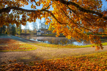 Bright colorful view of fall foliage in a park with a pond and rotunda. Golden tree at the foreground Stock Photo