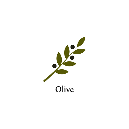 peace label: Isolated green vector olive branch . Olive oil sign. Symbol of peace. Greek religious sign. Mythological icon.Healthy products label. Organic cosmetics. Eco food. Natural element.Agricultural item