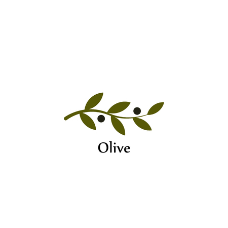 Isolated green vector olive branch . Olive oil sign. Symbol of peace. Greek religious sign. Mythological icon.Healthy products label. Organic cosmetics. Eco food. Natural element.Agricultural item