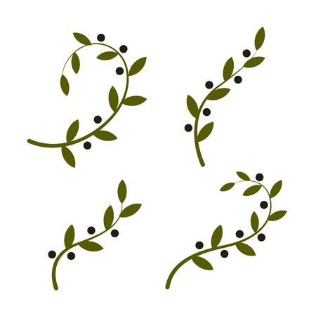 Isolated branche vecteur d'olive Vecteurs