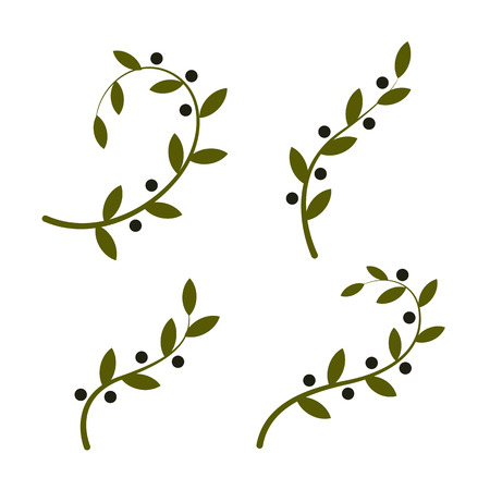 Isolated olive branch vector Çizim