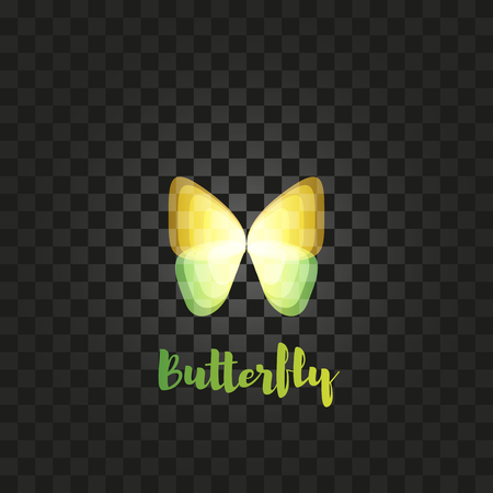 yellow butterfly: Isolated yellow butterfly with writing vector . Flying insects . Wild nature elements icon. Wings illustration. Illustration
