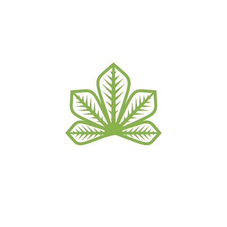 chestnut tree: Isolated abstract flat green color logo. Chestnut tree leaf on white background vector illustration. Outlined in monochrome lines nature element logotype