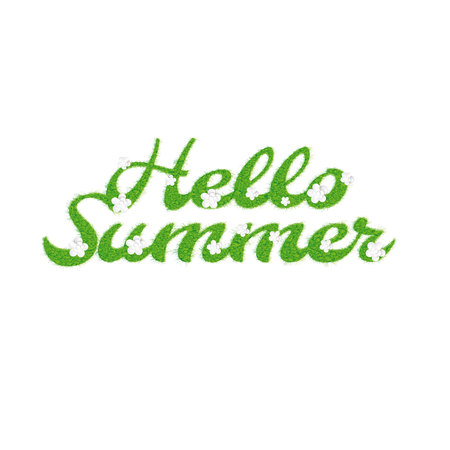 stead: Greeting of the summer season. Lettering with the image of letters in the form of a lawn with flowers and the inscription summer, hello illustration