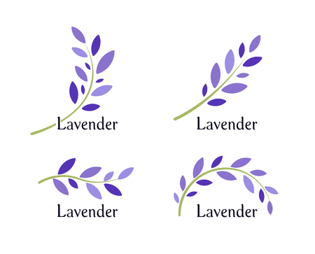 Lavender icons set. Violet leaves and green branch of lavender. Natural herb logo template. Vector illustration. Vettoriali