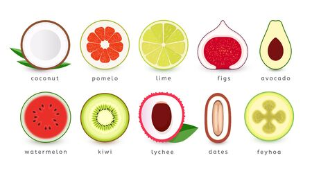 Set of fresh fruits icons. Slice of tropical fruits  collection. Isolated vector emblems. Çizim
