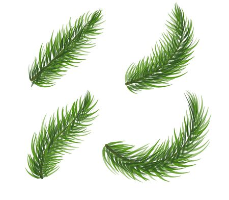 Set of pine tree branch. Fir tree christmas wreath elements. Coniferous plant icon collection on white background. New Year symbol. Vector illustration. Stock Illustratie