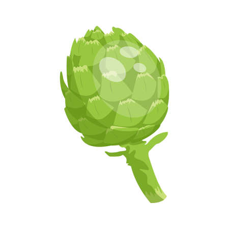 Cartoon fresh organic green artichoke icon. vector illustration.