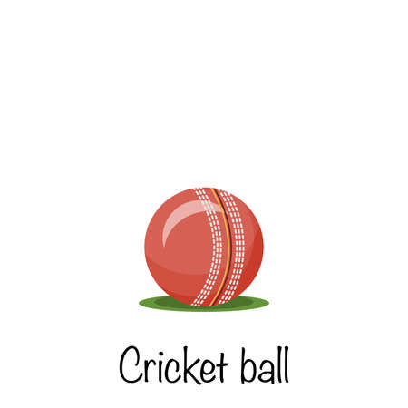 Cricket sports red game ball, vector illustration