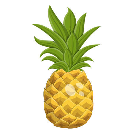Cartoon ripe pineapple fruit, vector illustration