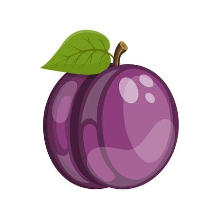 Cartoon ripe plum fruit, vector illustration