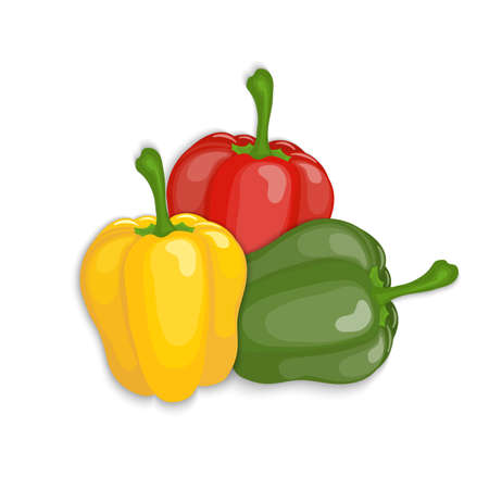 Realistic red, yellow, green  bell peppers, vector illustration Illustration
