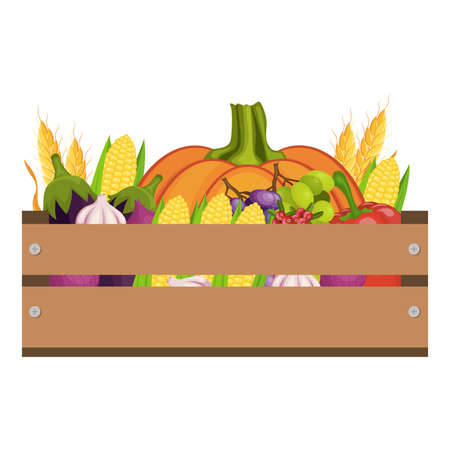 Thanksgiving day icons set. Harvest. Vegetables. Autumn harvesting. Vector illustration.