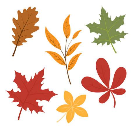 Set of autumn fall leaves, cartoon vector illustration