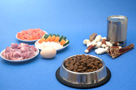 dog food includes dry pellets, treats and canned foods along with a natural diet of fresh meat, fish, rice and vegetables. choice between dry food and natural dog food Фото со стока