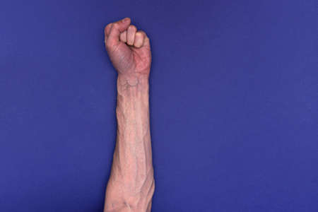 Man hand with large veins on a blue background. clenched fist as a show of strength
