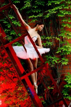 beautiful ballerina in dance photo