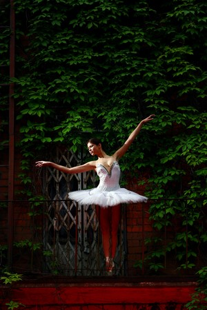 beautiful ballerina dance ballet action, aerobics, art, artist, balance, ballerina, ballet, beautiful, beauty, caucasian, classical, cool, culture, dance, dancer, elegance, energy, exercise, fashion, female, femininity, fitness, foot, girl, grace, graffit Stock Photo - 9280290