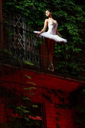 beautiful ballerina dance ballet  photo