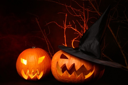 a two fresh halloween pumpkin on black photo