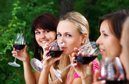 group of beautiful womens drinking wine in the park photo