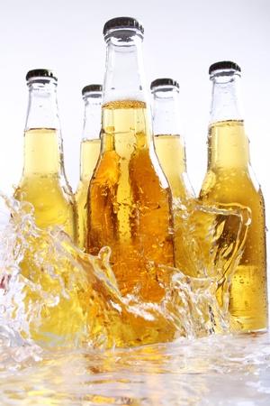 Beer bottles with water splash photo