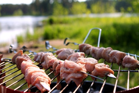 Fresh meat on the grill with charcoal Stock Photo - 9636314