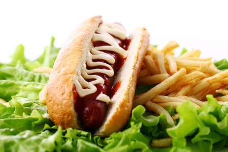 Fresh and tasty hot dog with fried potatoes on the salad leaves photo