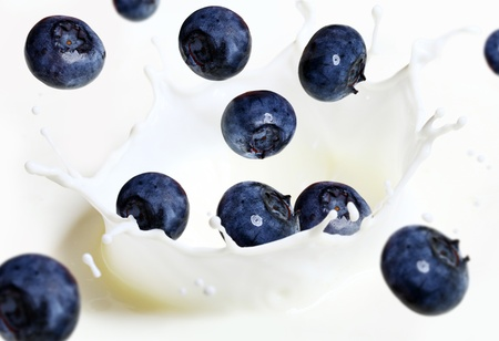 Close up of blueberry falling into splash of milk photo